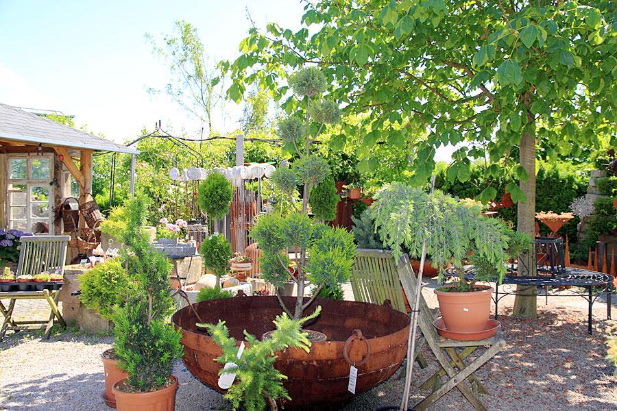Garten wohnen zinser herrenberg gartenartikel und for Deko gartenartikel